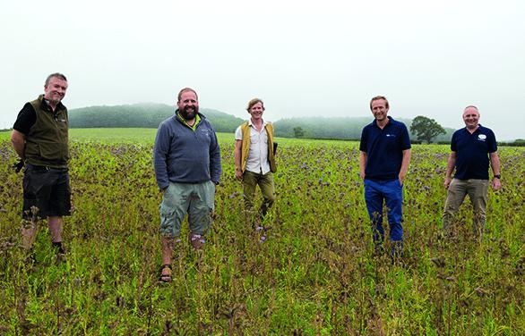 Deepdale Farm staff with friends in a field